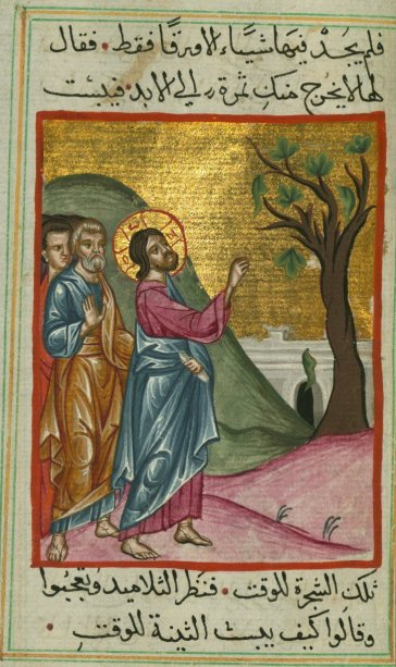 The Parable of the Barren Fig Tree, Gospels, Ms. W. 592, fol. 58a, from The Digital Walters