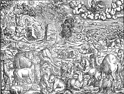 Creation, Historien und Bucher, Flavius Josephus, 1569, from Pitts Theology Library